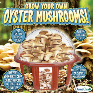 Grow Your Own Mushrooms Dome