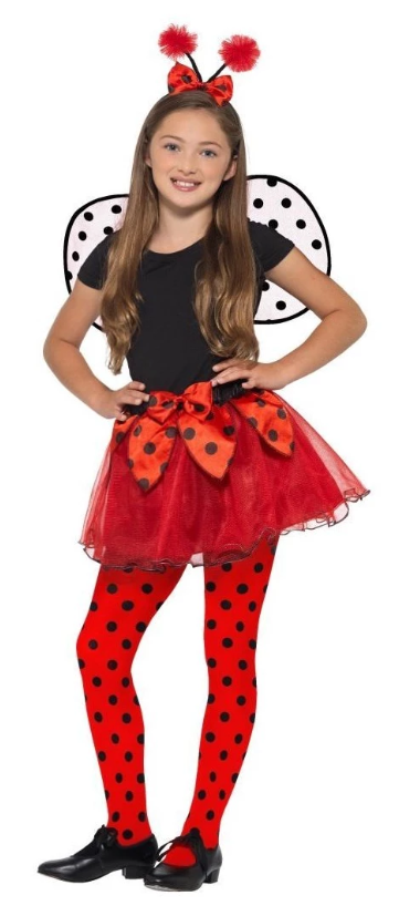 Ladybird Kit Costume