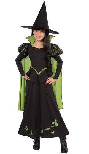 The Wicked Witch Of The West Costume