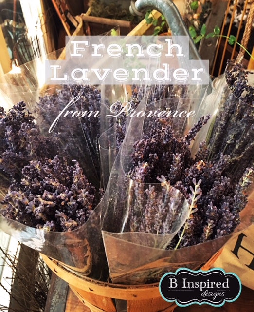 Dried Lavender from France