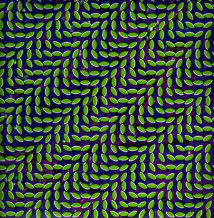 Music Monday | Taste By Animal Collective