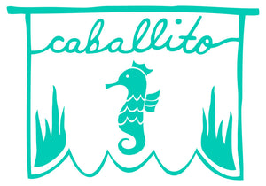 NEW LOGO, PACKAGING, PHOTOSHOOT & WEB DESIGN PROJECT - CABALLITO