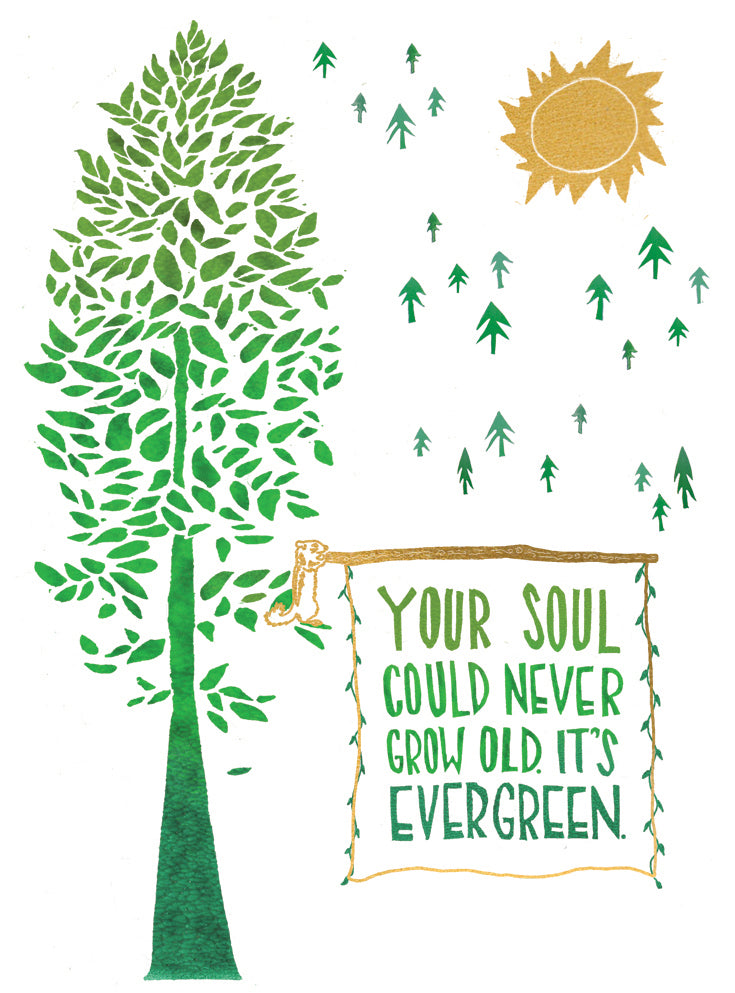 Your Soul Is Evergreen Greeting Card 6-Pack Inspired By Music