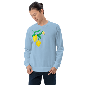 Citrus Blossom Adult Sweatshirt