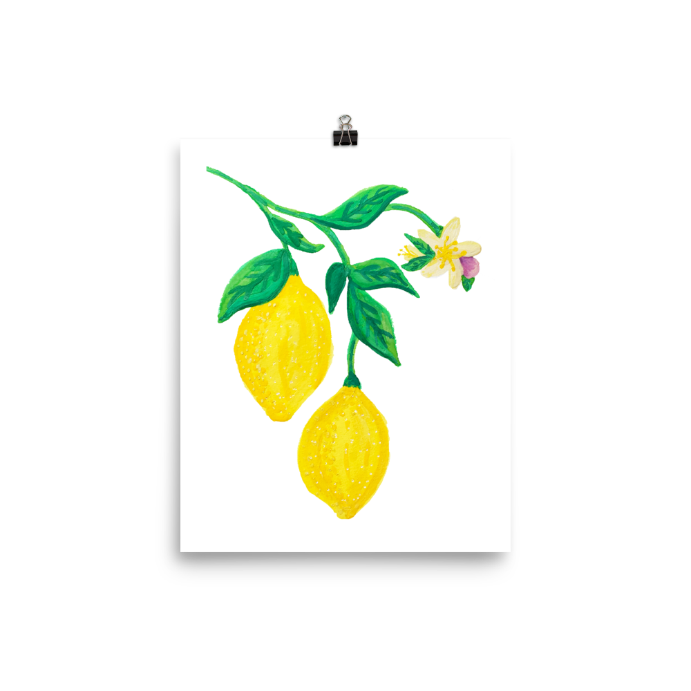 Citrus Blossom Branch Art Prints