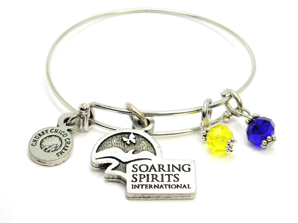 Soaring Spirits Crystal & Silver Bangle Bracelet