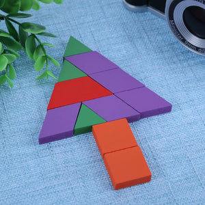Timber Geometric Puzzle Shapes wooden - Sensory Monkey Autism ASD Aspergers Sensory Needs, ADHD Attention Deficit Disorder Spectrum Children