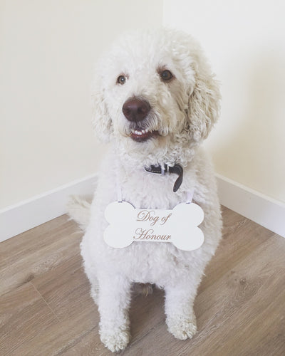 dog of honour wedding sign