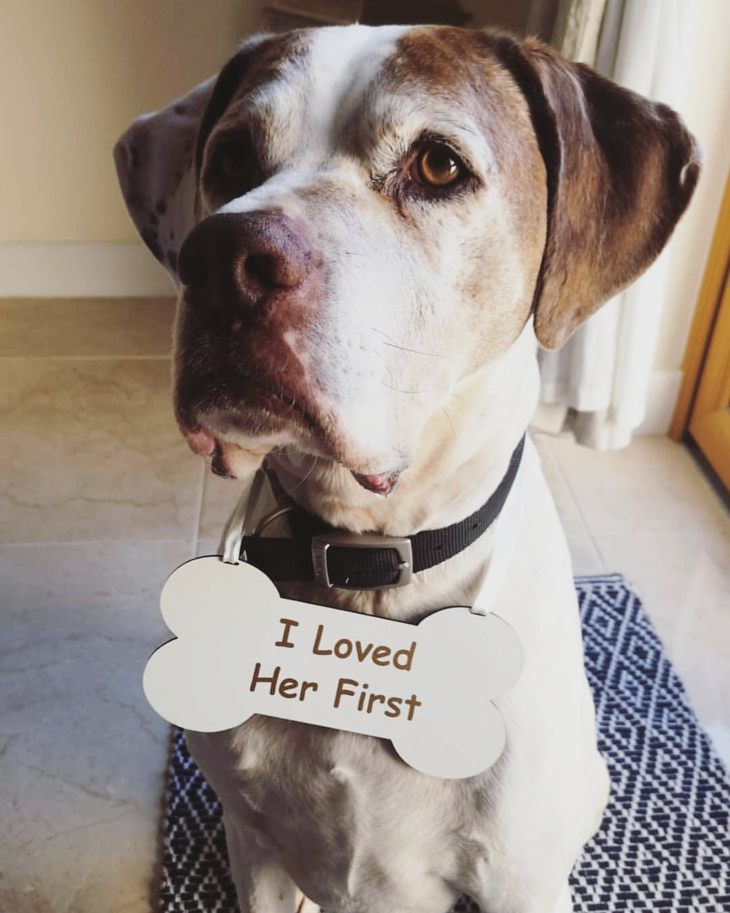I Loved Her First wedding dog sign