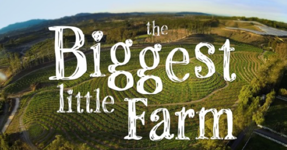 "Got Climate Anxiety? Watch ""The Biggest Little Farm""— a Template for Regeneration"