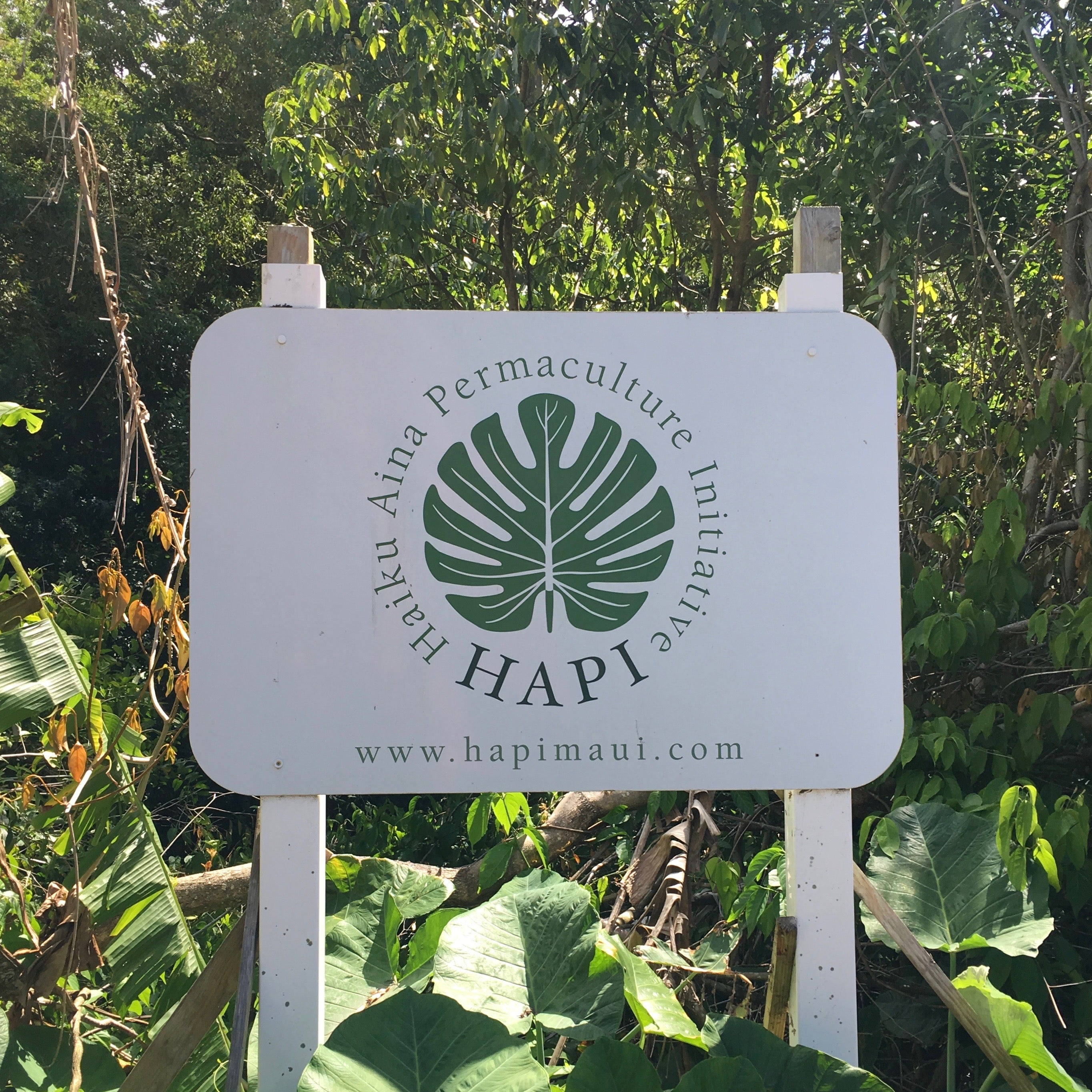 Haiku Aina Permaculture Initiative (HAPI)