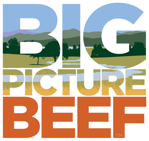 Big Picture Beef