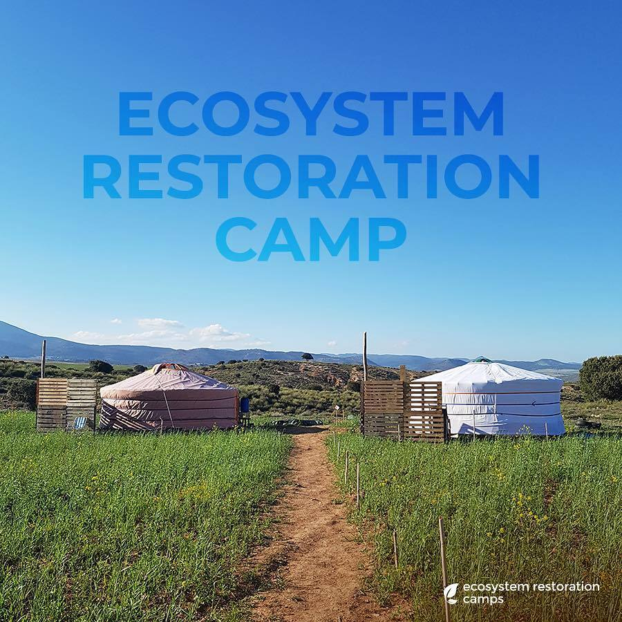 Ecosystem Restoration Camps: Altiplano, Spain