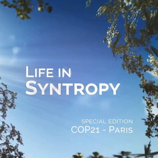Video - Life in Syntropy
