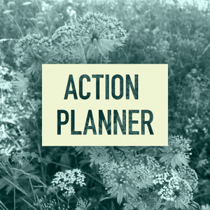 Action Planner - Action Planner Instructions