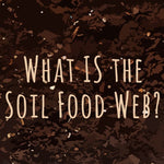 Video - What is the Soil Food Web?