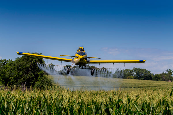 crop duster spraying wheat with pesticide
