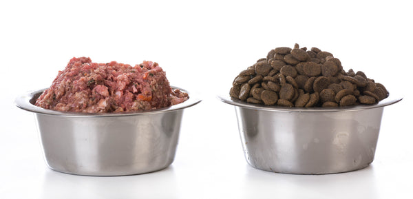 side by side bowl shot of raw minced dog food and kibble