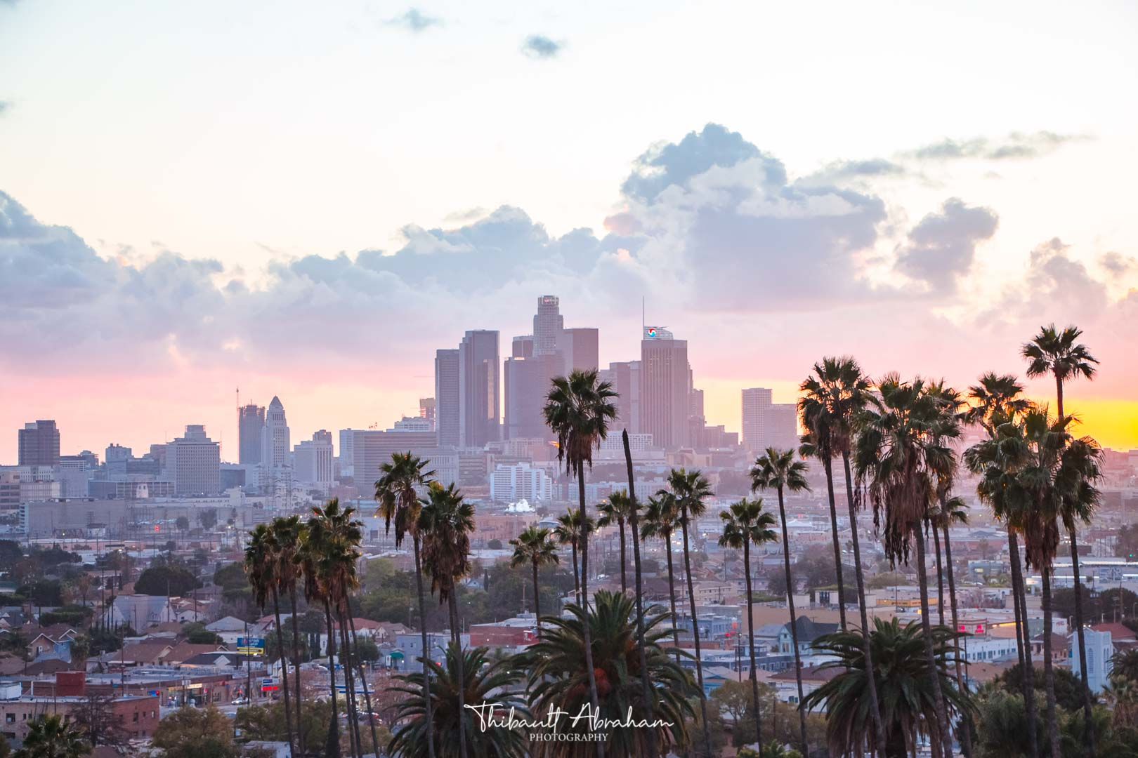 Palm trees and pink sunset in Los Angeles