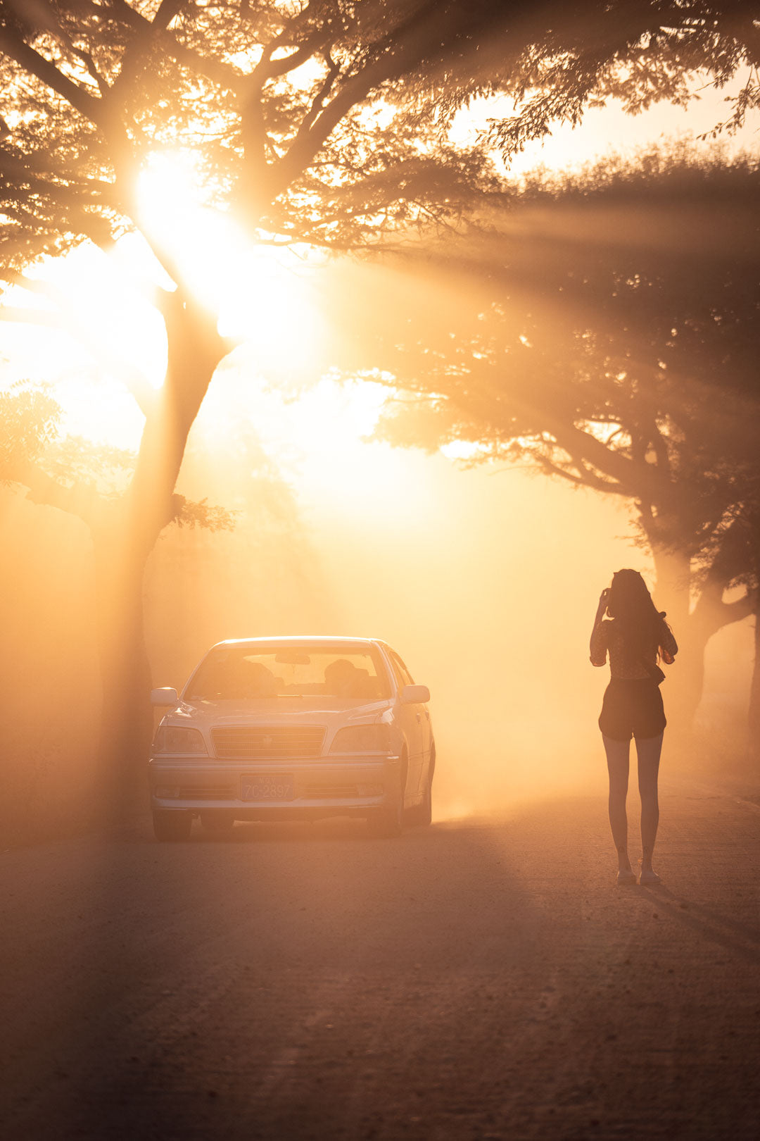 Photograph of a hitchhiker illuminated by a ray of sunshine