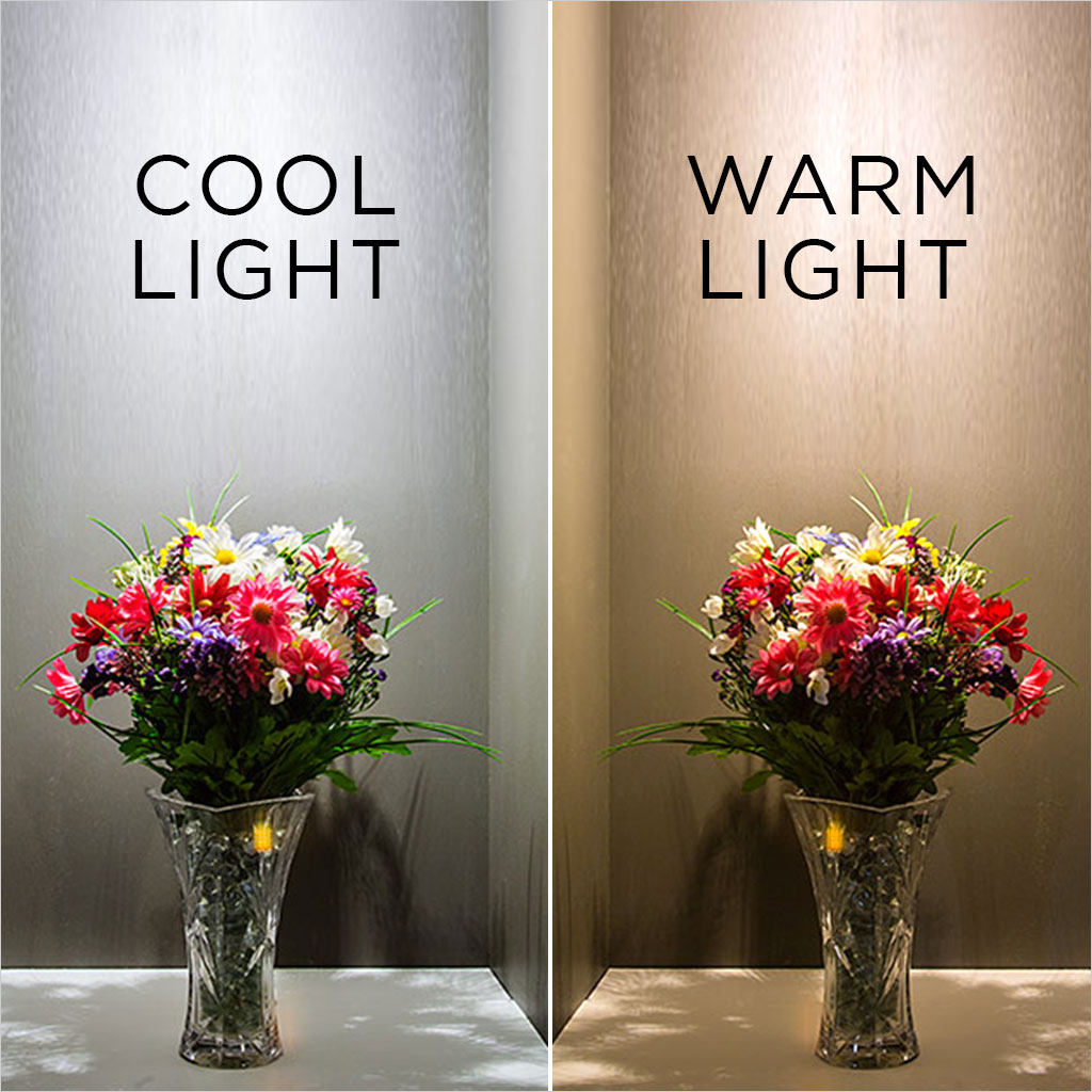 cool light versus warm light