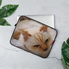 Load image into Gallery viewer, Laptop Sleeve 11 inch Cat