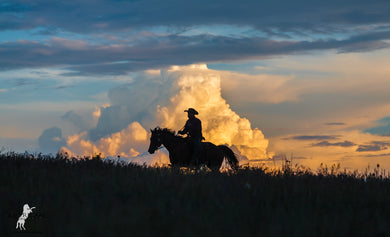 Summer Sunset - American Cowboy Art