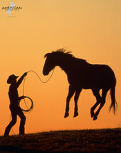 Load image into Gallery viewer, First Loop - Limited Edition - American Cowboy Art