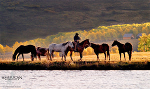 On the Water's Edge - American Cowboy Art