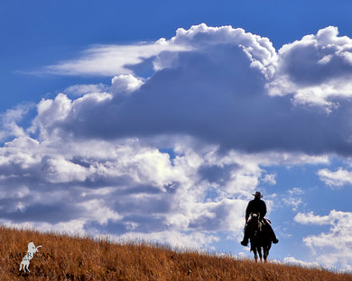 Colorado Blue - American Cowboy Art