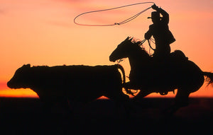 """Colorado Cowboys"" A Portrait of the American West by Christopher Marona - American Cowboy Art"