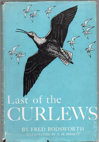 Last Of The Curlews