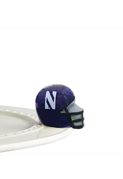 Northwestern  Helmet