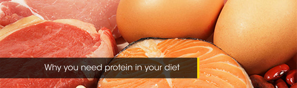 Why you need Protein in your diet