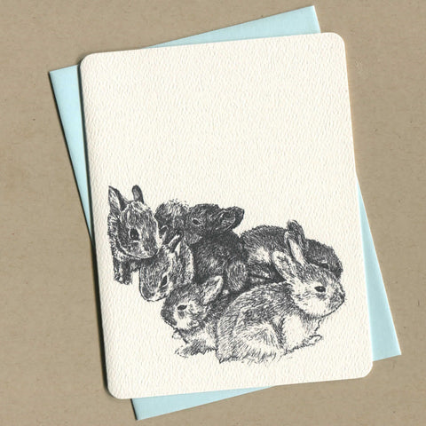Outside of dirty greeting card shows a black and white illustration of baby bunnies
