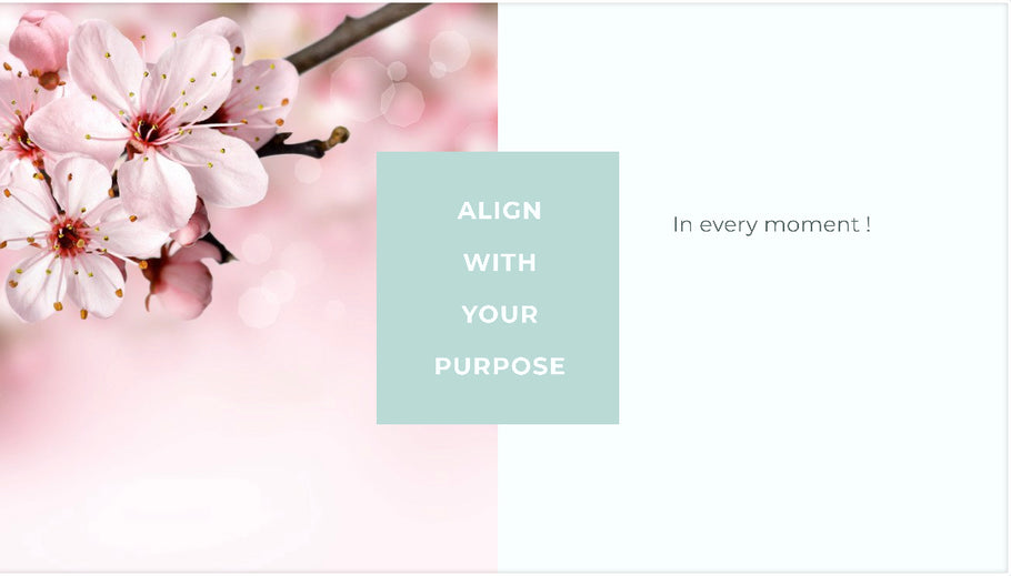 Ep # 2 Align with your Purpose