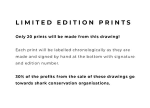 Whale Shark - Limited Edition A4 Print - Signed and numbered