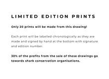 Load image into Gallery viewer, Blue Shark - Limited Edition A4 Print - Signed and numbered