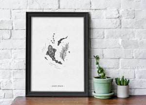 Swell Shark - Limited Edition A4 Print - Signed and numbered