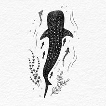 Load image into Gallery viewer, Whale Shark - Limited Edition A4 Print - Signed and numbered