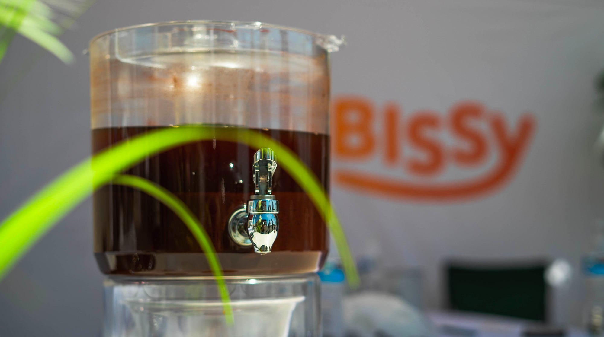 Bissy Royal Kolanut Fruit energy drink at event with plants