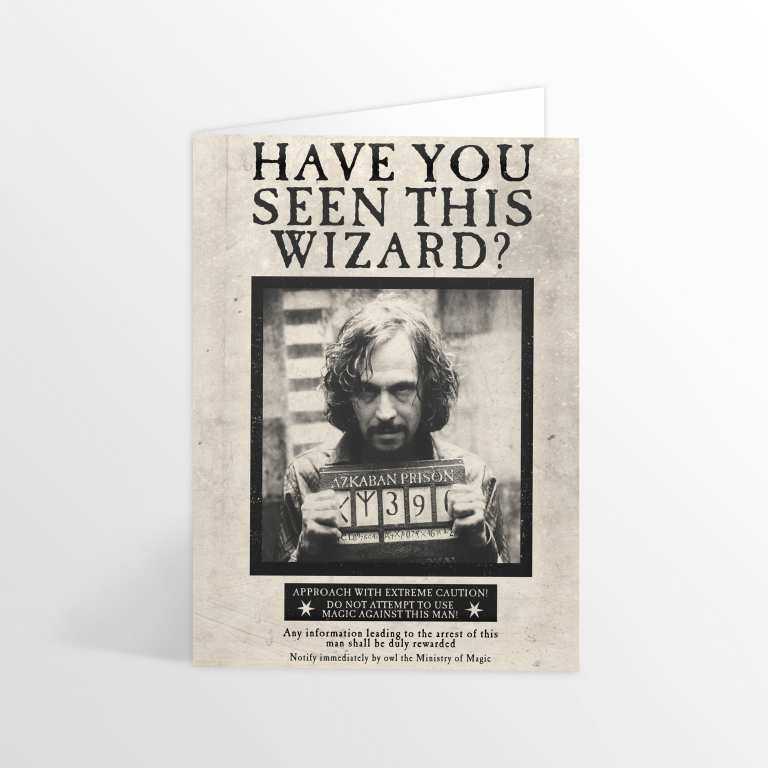 MinaLima Have you Seen this Wizard? Lenticular Card