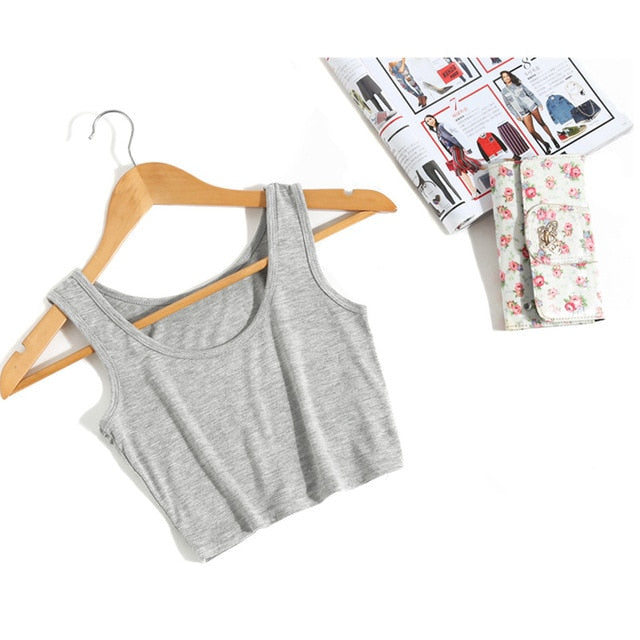 Wanderer Must-Have Crop Top / Grey