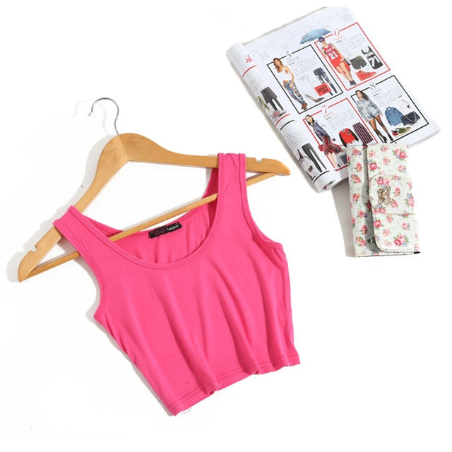 Wanderer Must-Have Crop Top / Pink