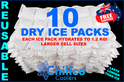 10 X CHILLCO DRY GEL ICE PACKS
