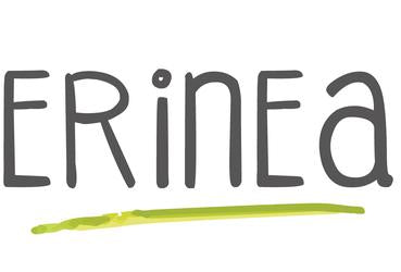Groupe Erinea Inc