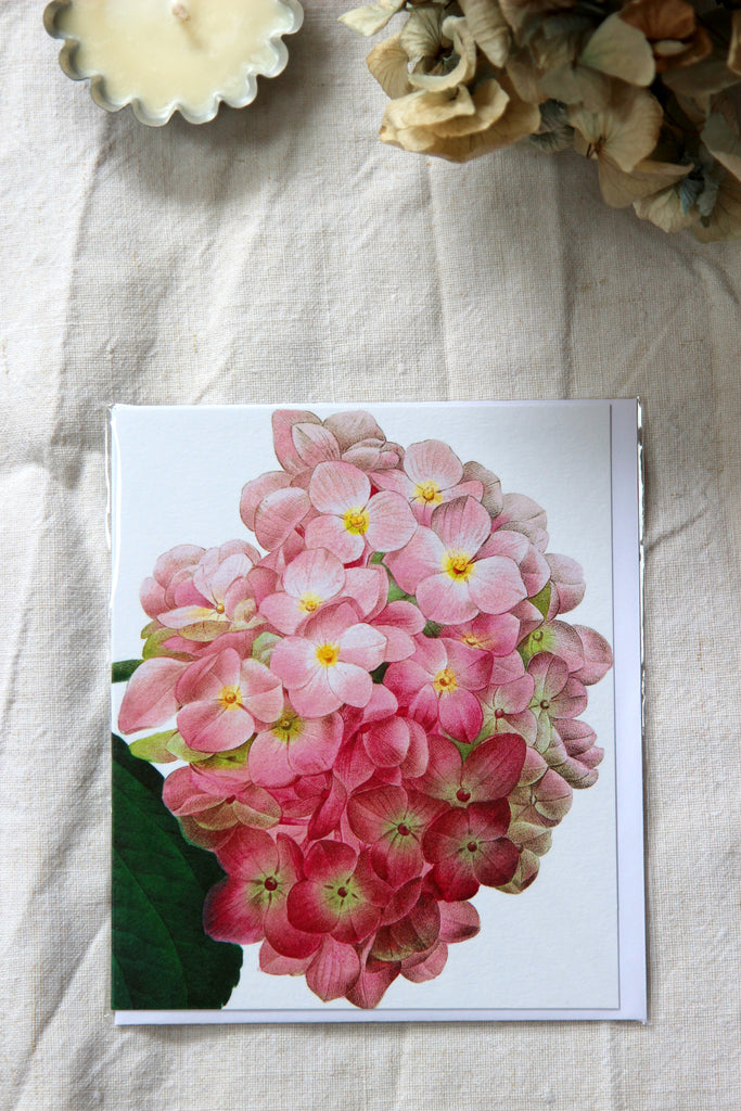 Natural History Museum Hydrangea Card