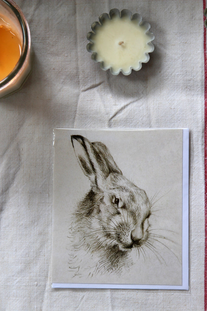 Natural History Museum European Brown Hare Card