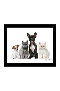 Cats & Dogs Canvas - Joinwell Malta