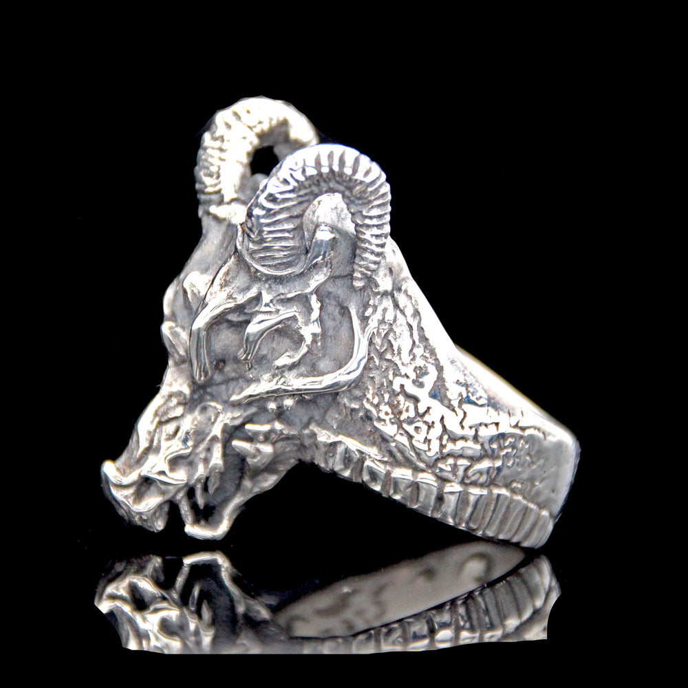 The Dragon Skull Ring 2 Saints The dragon skull is a hardmode enemy that spawns in the underworld. eur